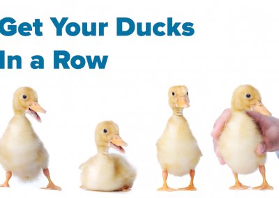 For web ducks in row
